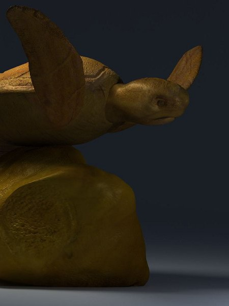 3D-015 Turtle Sculpture