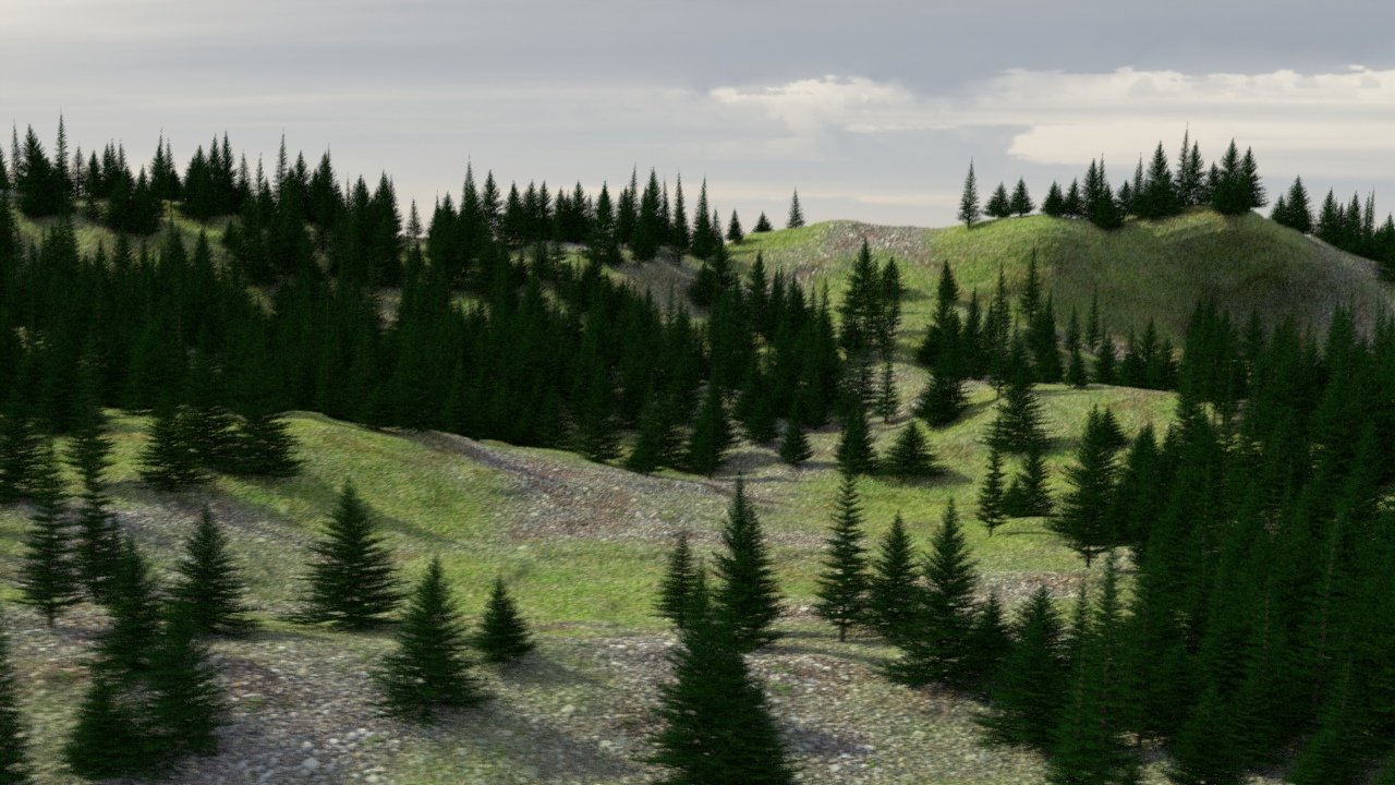 Evergreen trees in a 3d forest scene ethereal 3d for The evergreen