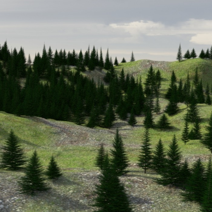 3D Evergreen Tree and Forest